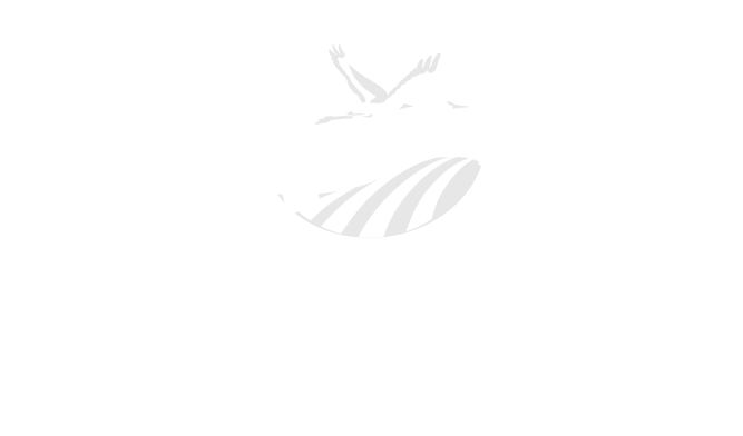 Delta Conservancy After Logo