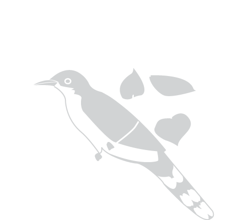Riparian Habitat Joint Venture After Logo
