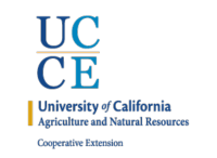 UCCE before